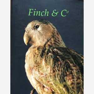 Finch & Co Spring 2005